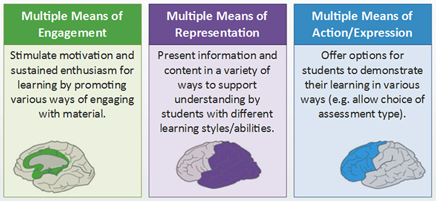 universal design for learning  Universal Design for Learning – Learning Bits, Bytes & Delights